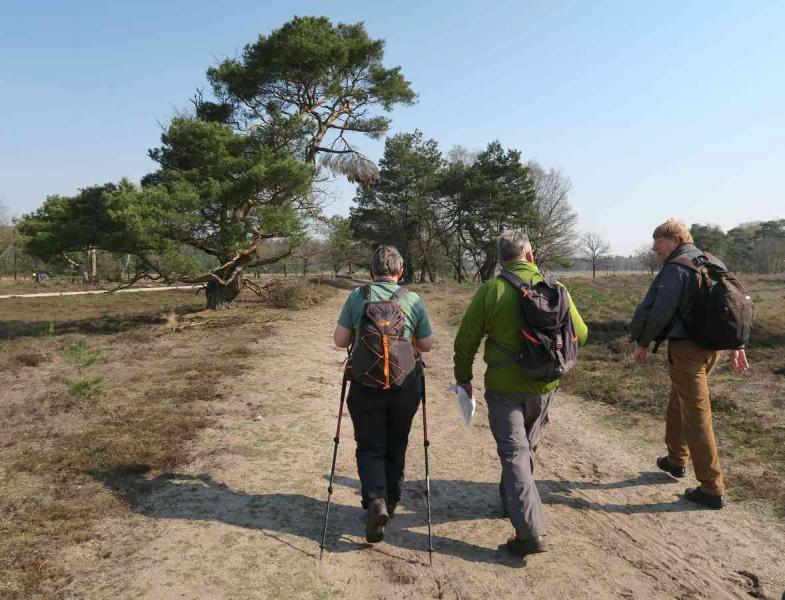 BSG wandeling Leersum 2019_10