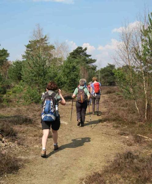 BSG wandeling Leersum 2019_37