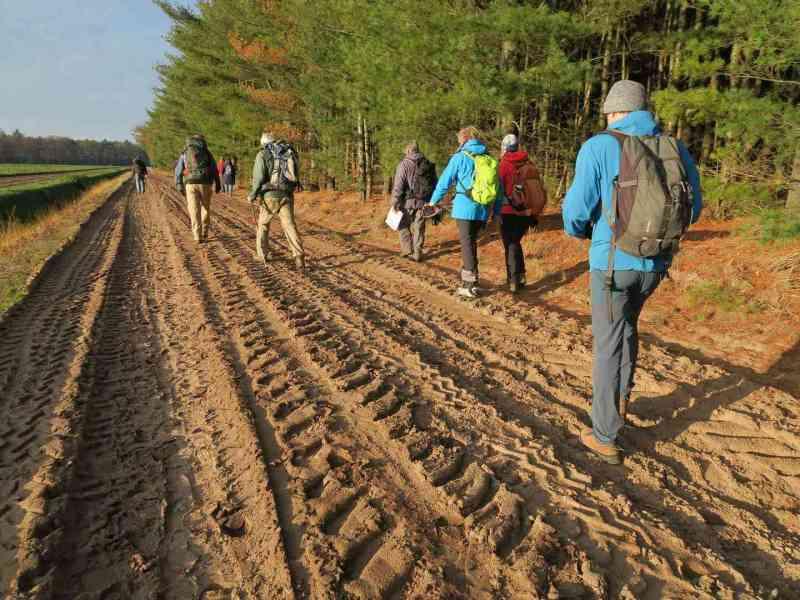 BSG-wandeling-Hilvarenbeek-kl33