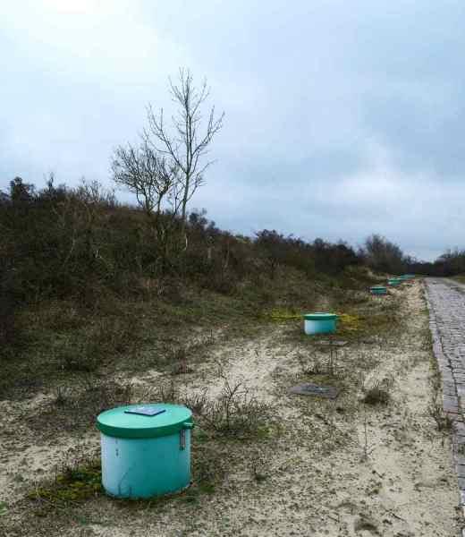BSG-wandeling-Meijendel_mrt-2020_21