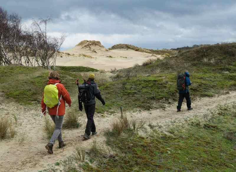 BSG-wandeling-Meijendel_mrt-2020_26