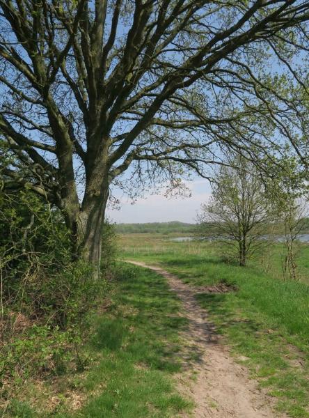 BSG wandeling Zundert apr18-19