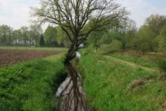 BSG wandeling Zundert apr18-05