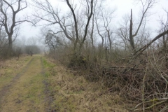 BSG wandeling Overveen-08