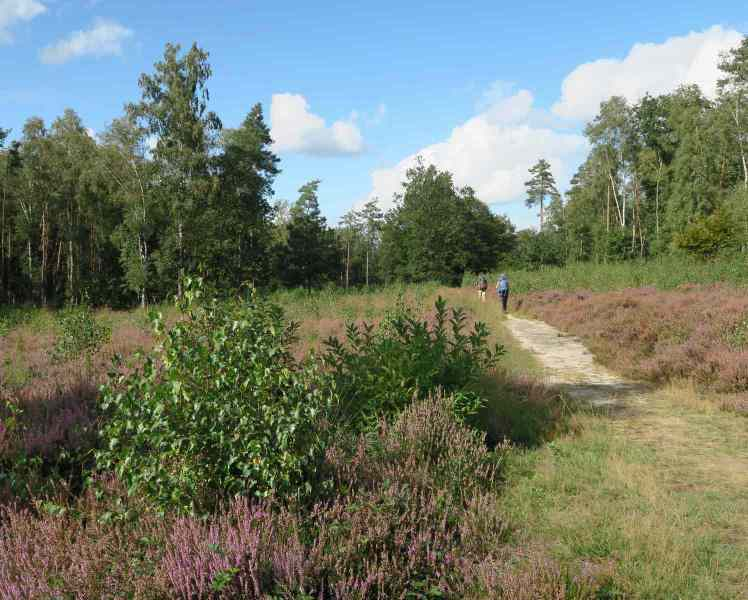 BSG-wandeling-Veenendaag-sept-2019_23