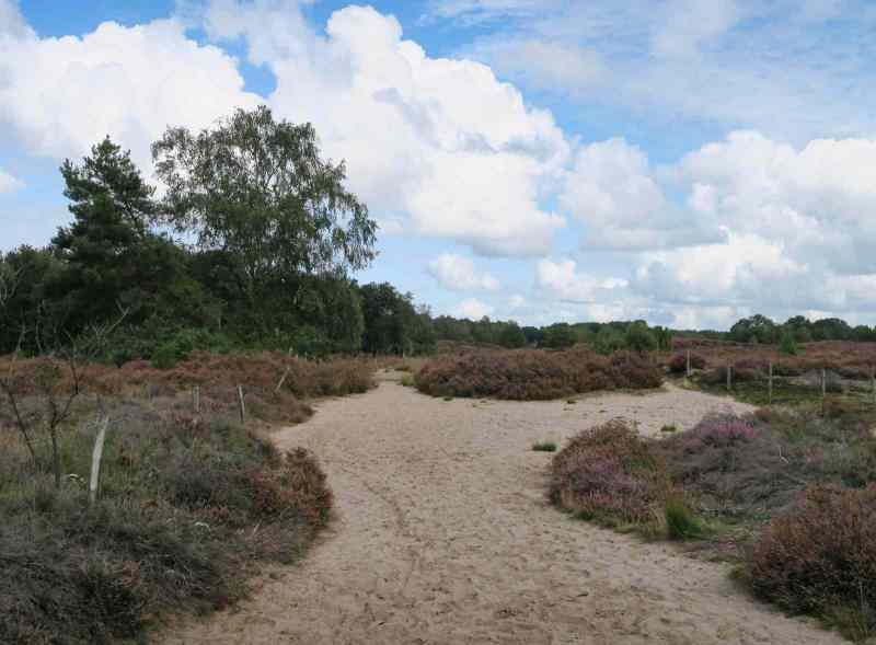 BSG-wandeling-Veenendaag-sept-2019_4